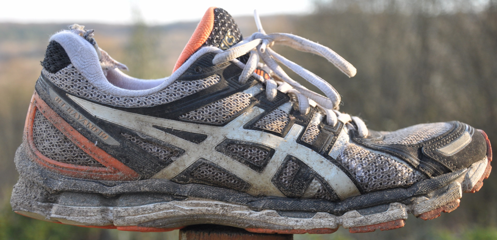 old asics running shoes